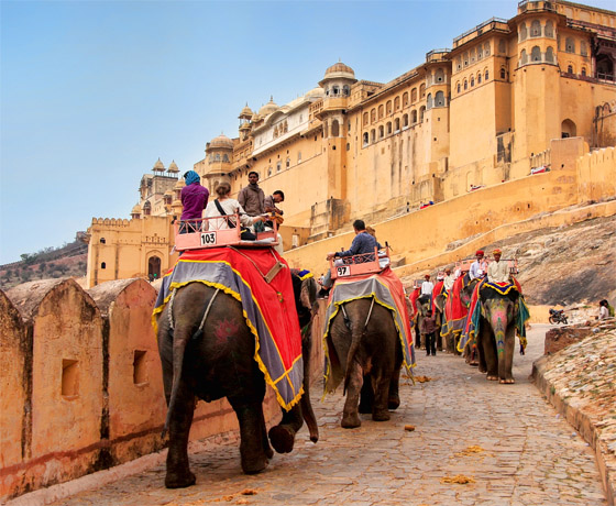Experience a visit to Amber fort on elephant back on our private tour of Jaipur